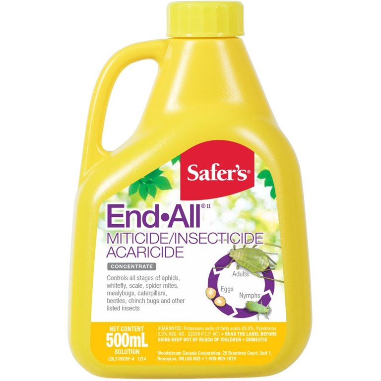 SAFERS END-ALL 500 ML CONC 12/CASE